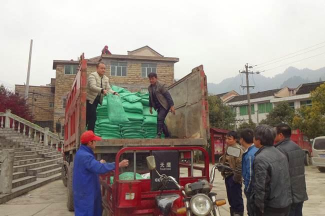浙江省免费发放有机肥,助力绿色农业快速发展