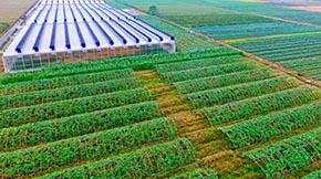 淄博:畜禽粪便抓利用,勇做生态循环农业的践行者