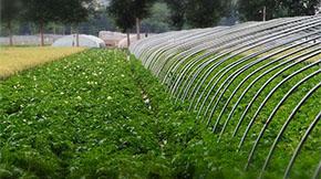 有机肥产业大爆发,将呈现这3大趋势