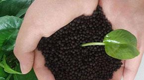 生物有机肥、有机肥、生物菌肥,这三者的差异